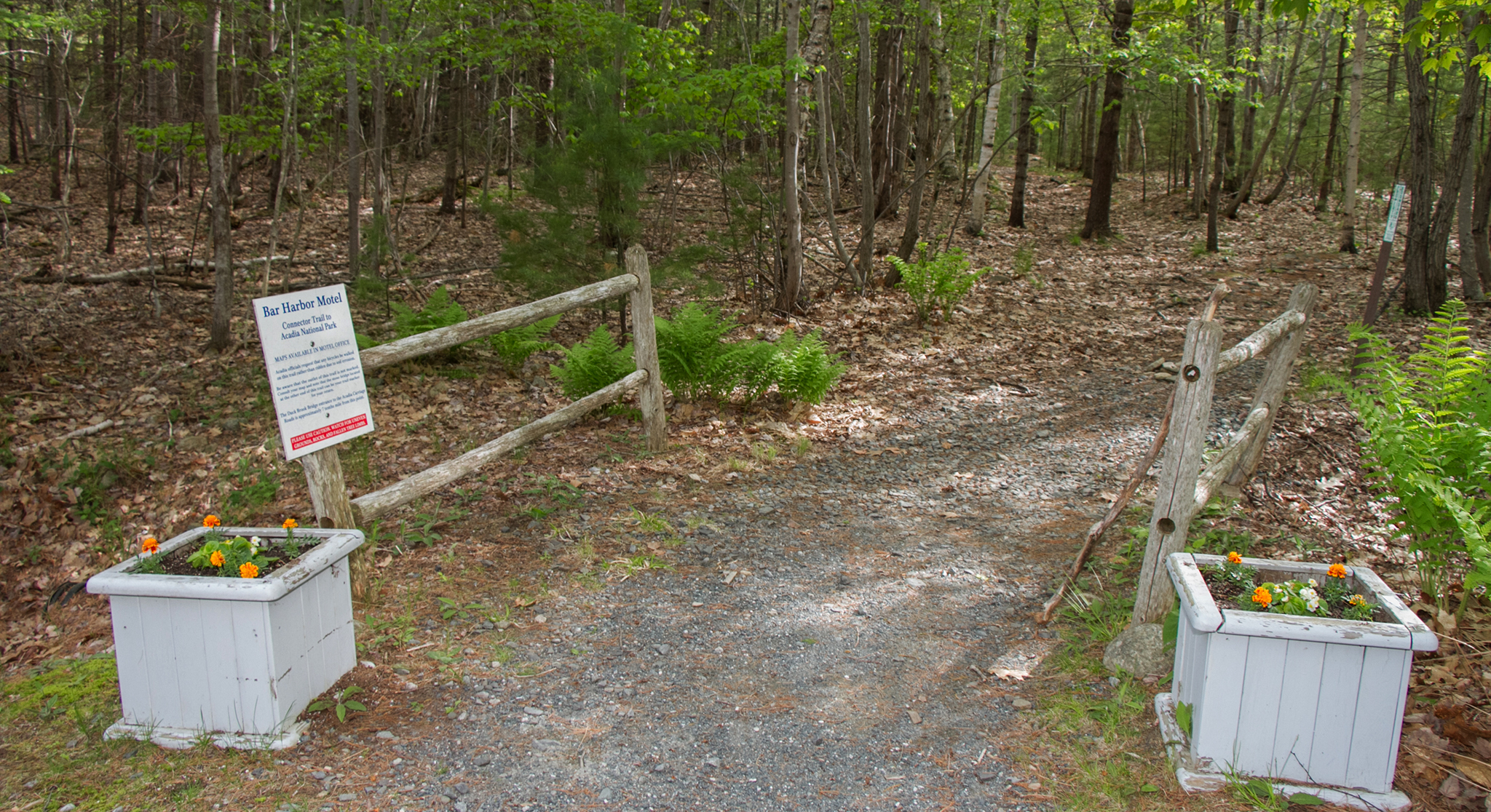 Photo of the Acadia National Park Trail access from the Bar Harbor Motel, Bar Harbor, Maine