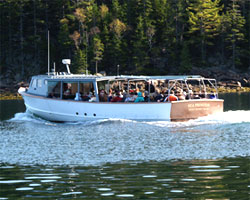 Things to Do in Bar Harbor | Nature Cruises