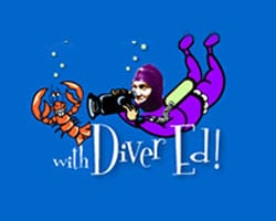 Things to Do in Bar Harbor | Diver Ed
