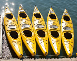 Things to Do in Bar Harbor | Kayaking